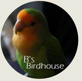 B's Birdhouse